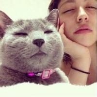 qq情侣头像猫:在冬天认识你