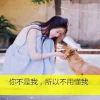 小清新qq头像女生带字:雁过无痕