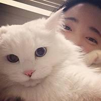 qq头像 男生猫:你胖起来是杨玉环