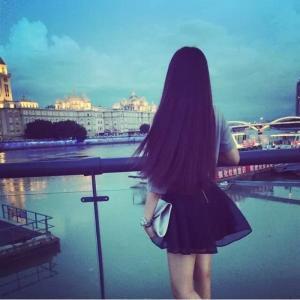 qq女生头像背影小清新:海豚想给天使一个吻