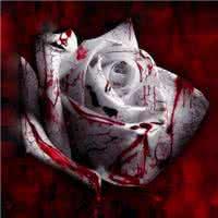 流血的qq头像:将来的某一天
