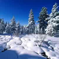 qq头像下雪:我喜欢上一个男生