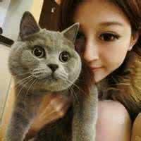 qq头像女生抱猫:天长地久终有时