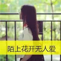 qq头像背影女生长发带字:我爱你日到了