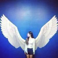 qq头像带翅膀的:爱就像一阵风