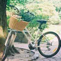 qq头像 单车:一年个日出