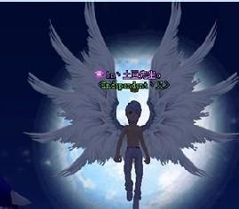 qq天使翅膀头像