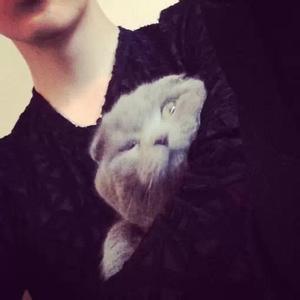 带猫的qq头像:我一定要给多活一分钟